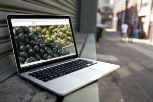 צילום מסך של ישראלנדו - סיורים קולינריים. לפטופ מונח באמצע הרחוב בפלורנטין. על המסך מופיעים זיתים שחורים וזיתים ירוקים
